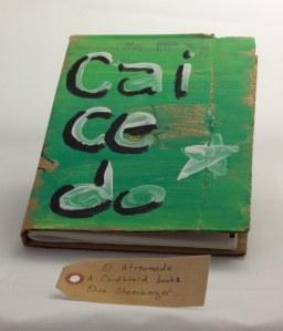 El Atravesado: a cardboard book